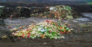 NOPE carries businesses' food waste to composting facilities.