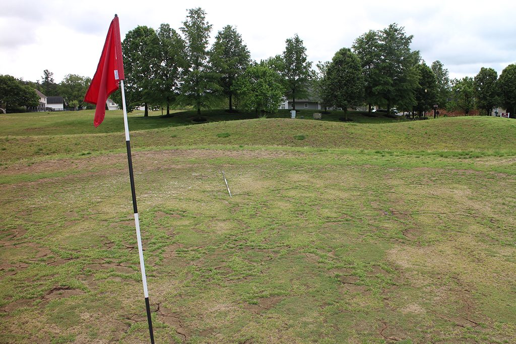 One of dried-out greens at River's Bend golf course. (BizSense file photo)