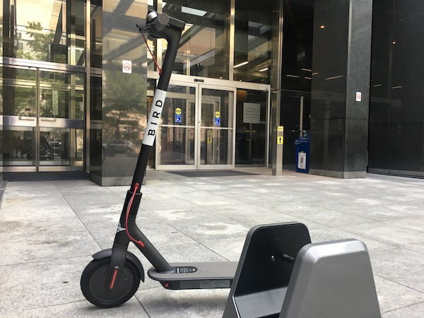 city bird meet to discuss scooter regulations richmond. Black Bedroom Furniture Sets. Home Design Ideas